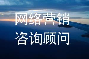 佛山企业网站推广咨询